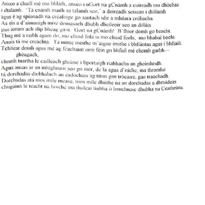 Cathal 1997 Irish-page-013.jpg