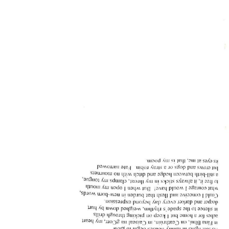 Cathal 1997 Irish-page-022.jpg