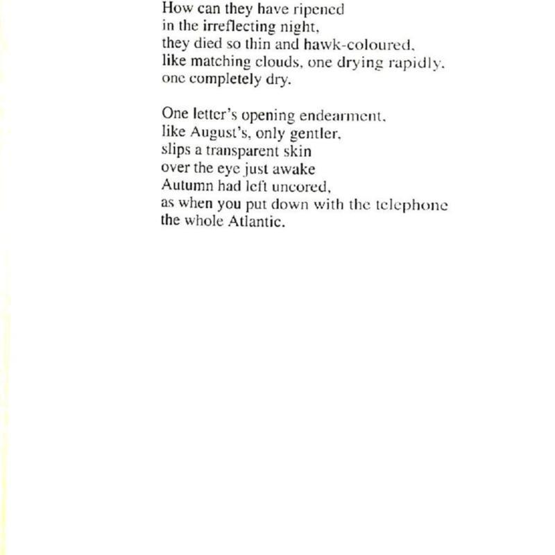 krino 15 done-page-030.jpg