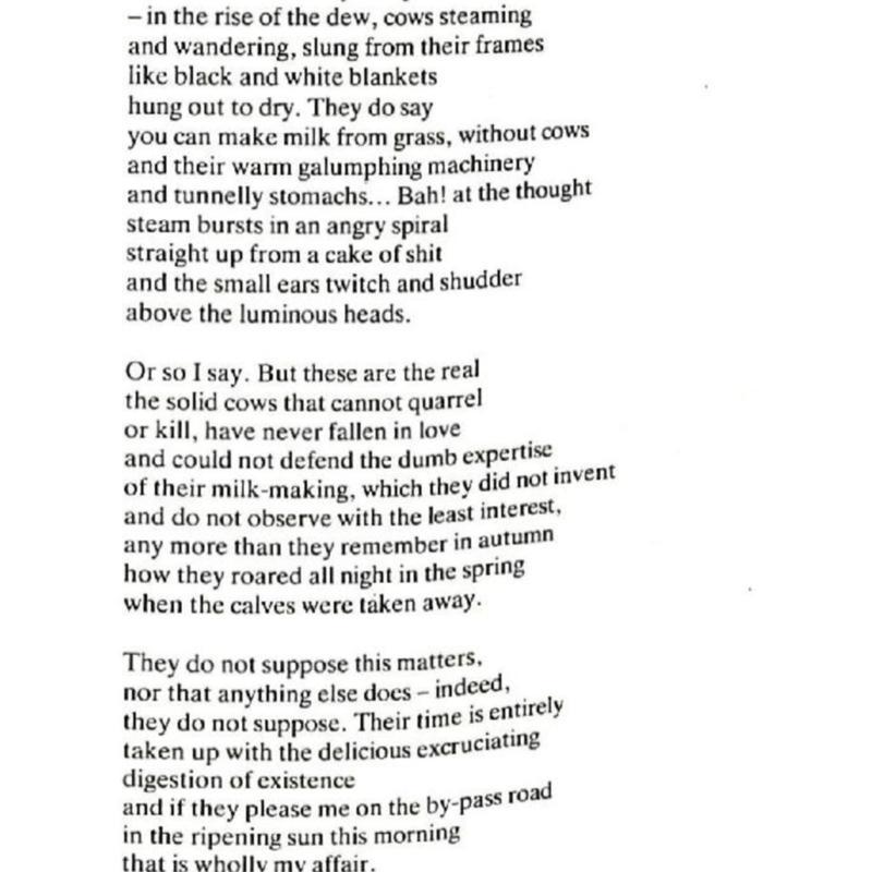 Hu Spring Summer 86-page-013.jpg
