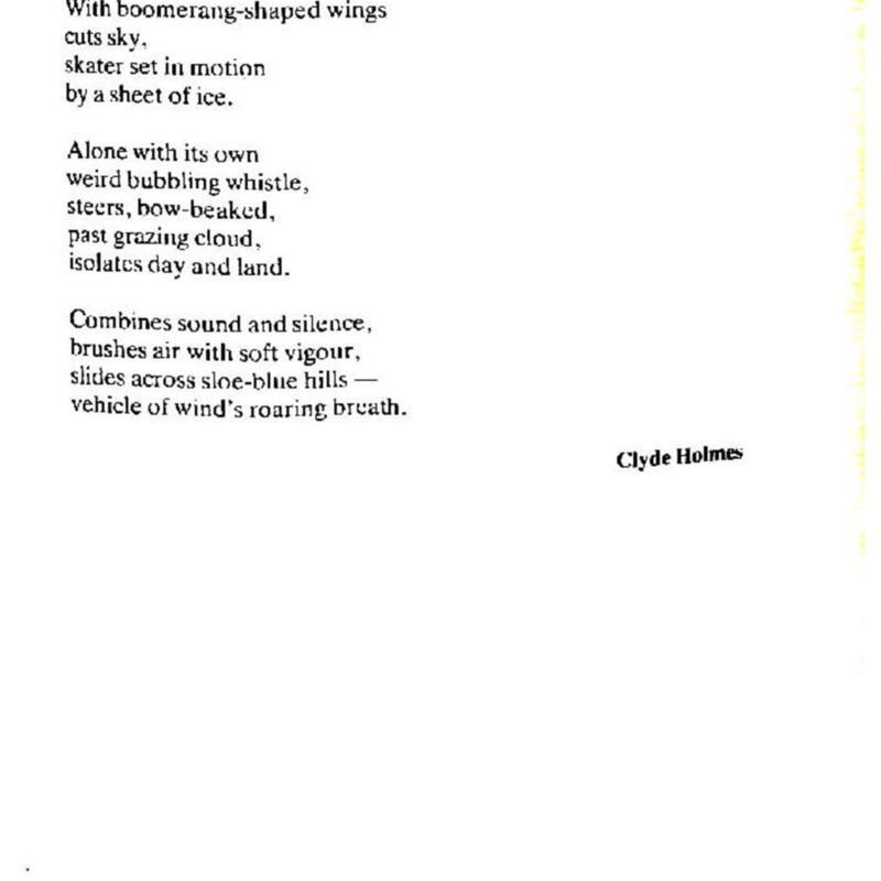 Summer Autumn 89-page-046.jpg