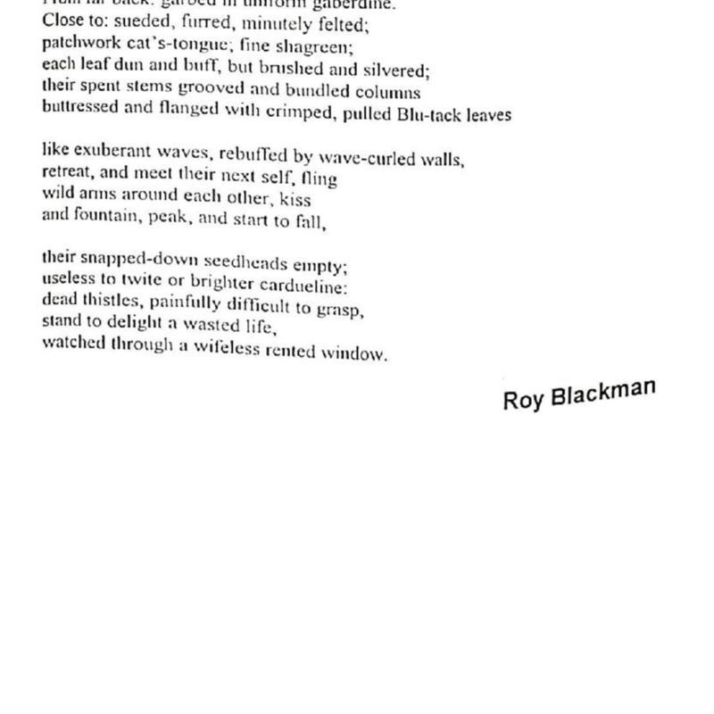 HU Autumn 1994-page-069.jpg